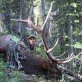 09-montana-elk